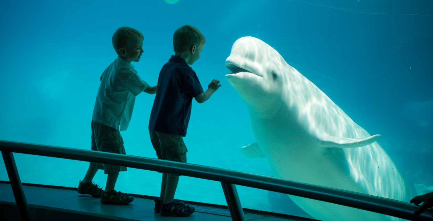 Careers @ Marineland - Find the job that's right for you - Careers Marineland Canada